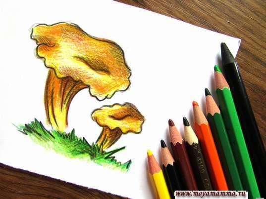 Лисички карандашами