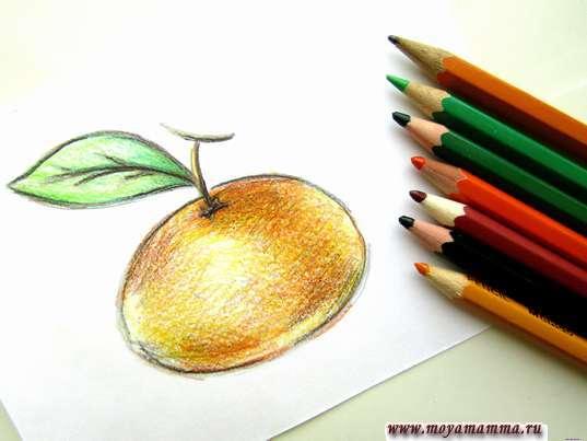 мандарин карандашами