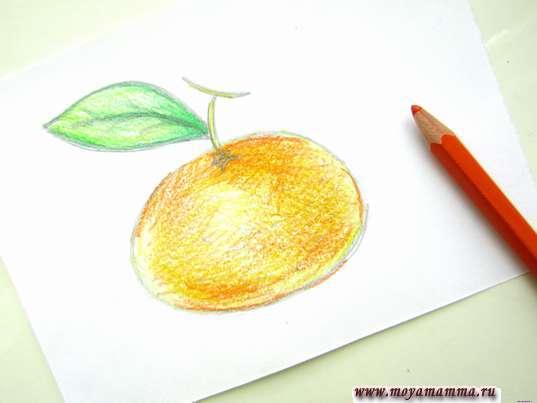 цвет кожуры цитруса оранжевым цветом