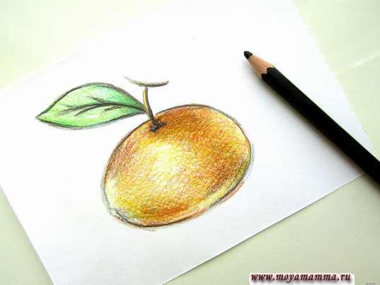 Контур и затемнение черным карандашом