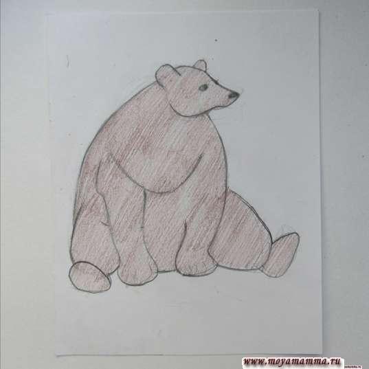 Раскрашивание медведя