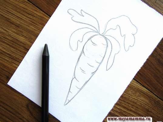 Готовый набросок моркови