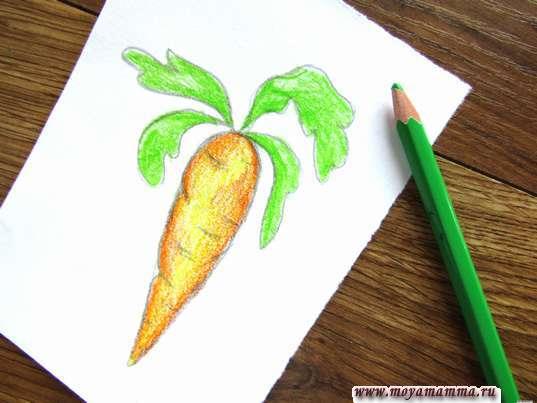 Морковь карандашами. Раскрашивание листиков