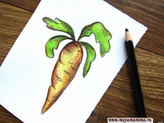 Морковь карандашами. Рисование черным карандашом