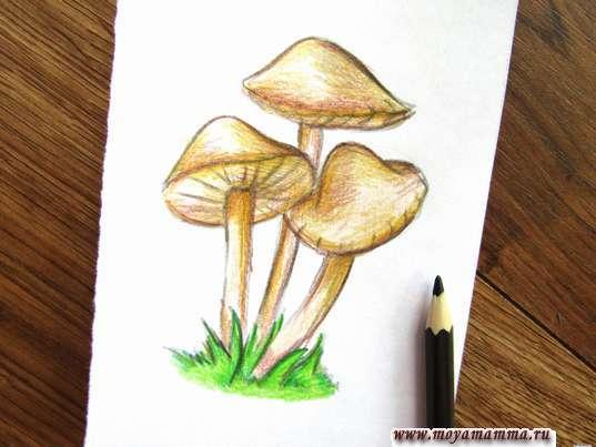 Дорабатывание рисунка темно-коричневым карандашом