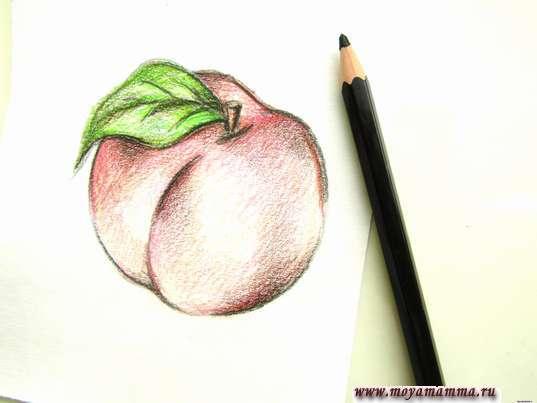 Контур черным карандашом