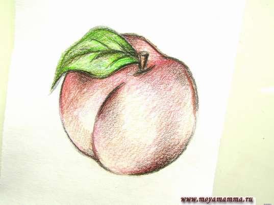 персик карандашами