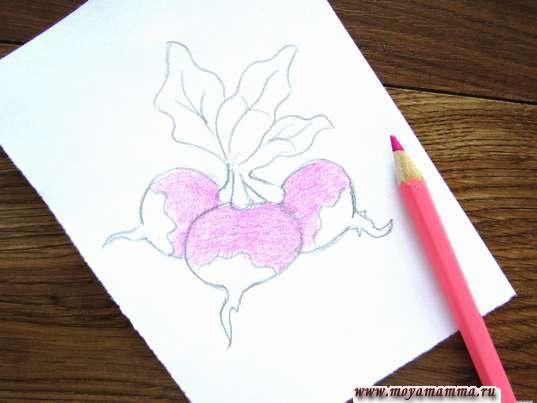 Редиска карандашами. Закрашивание розовым карандашом