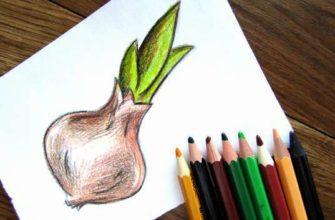 Рисунок карандашом Лук