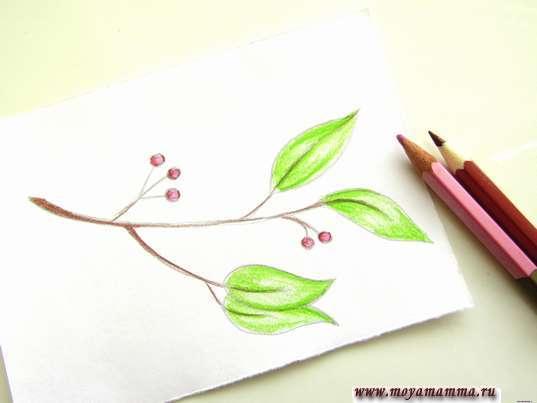 Использование розового и бордового оттенков карандашей