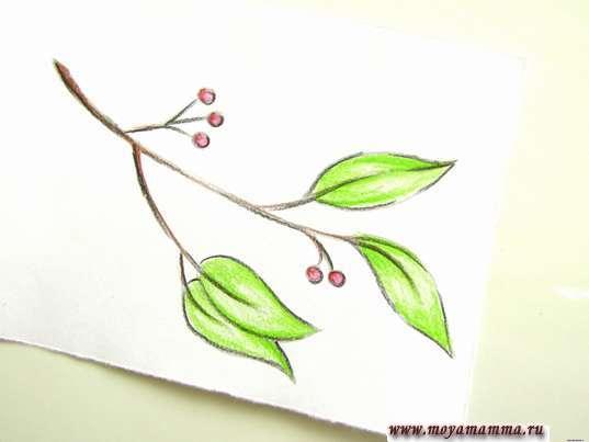 рисунок весенних листьев