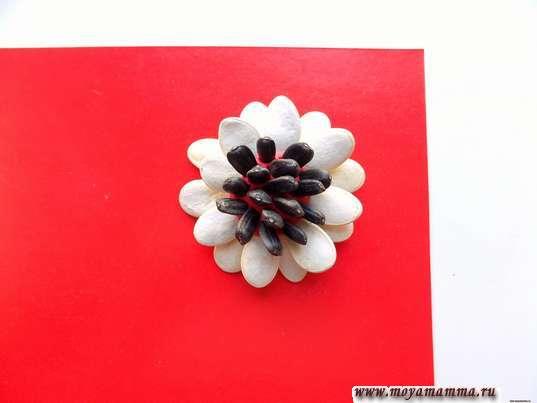 Середина цветка из семечек подсолнечника
