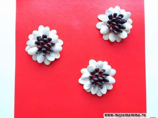 Цветы из тыквенных семечек и семечек подсолнуха