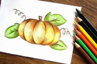 Тыква карандашами