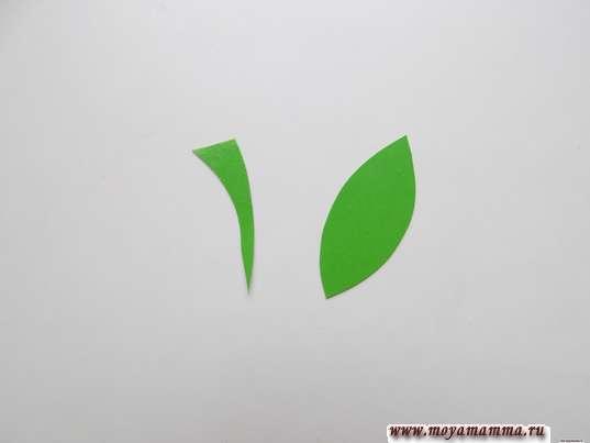 Черенок и листочек из зеленого картона