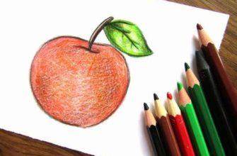 яблоко карандашами