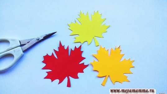 Аппликация день учителя. Кленовые листочки желтого, оранжевого, красного цвета