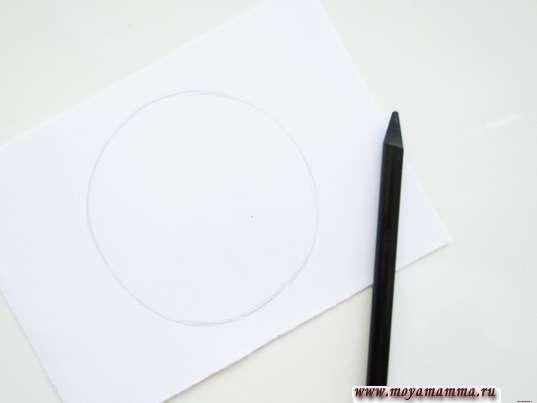 Контур большого круга