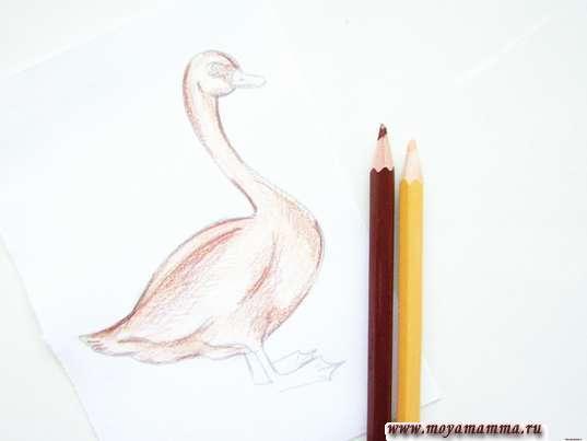 Рисование бежевым и темно-коричневым карандашом