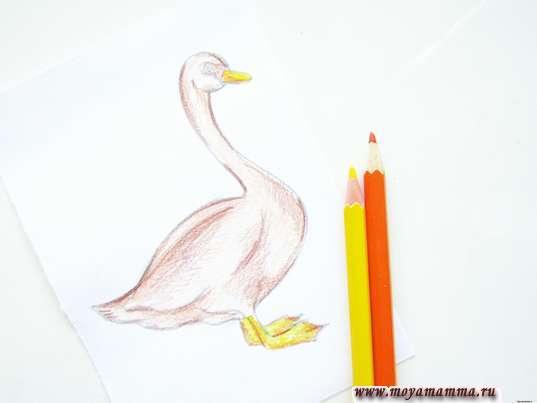 Клюв и лапки желтым карандашом