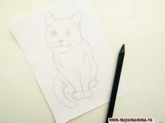 Готовый набросок кошки