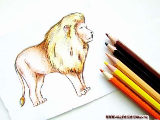 рисунок для детей лев