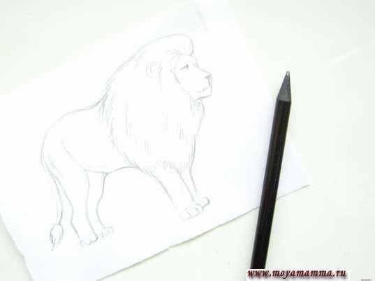 Готовый набросок льва