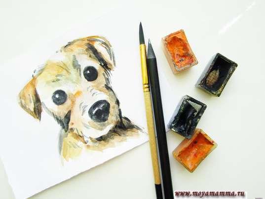 рисунок для детей собака