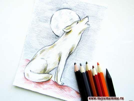 рисунок для детей волк