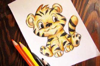 рисунок тигренка карандашами