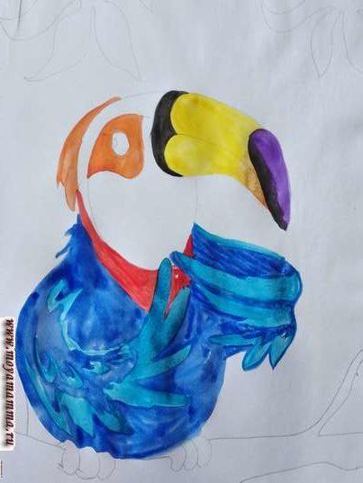 красный галстук на груди, черное пятно на основании клюва и черно-фиолетовый элемент на конце клюва