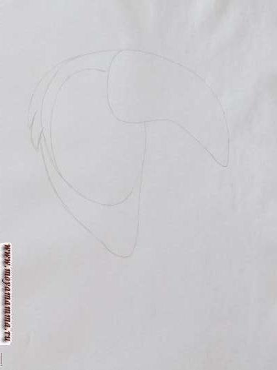 Голова с перьями и часть груди