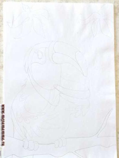 На голове тукана рисуем глаза, зрачки, ресницы, а также элементы клюва.