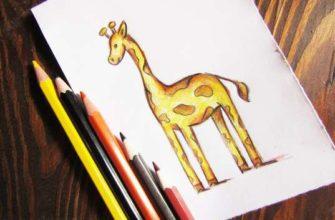 рисунок жираф карандашами