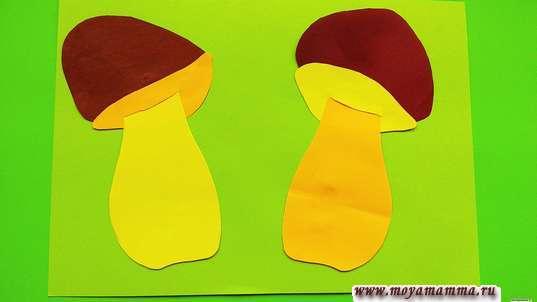 2 гриба с коричневыми шляпками