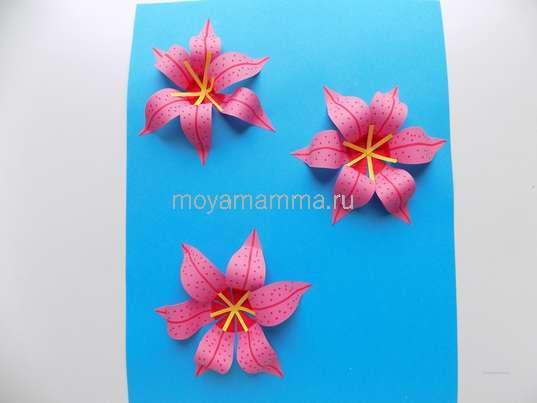 Аппликация лилии из бумаги. Оформление цветочков