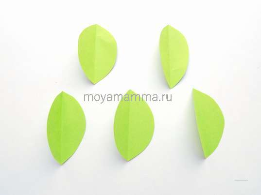 Листочки из светло-зеленой бумаги.