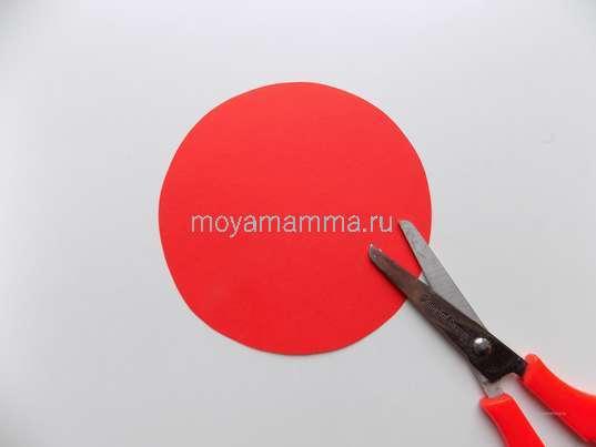круг диаметром около 11 см