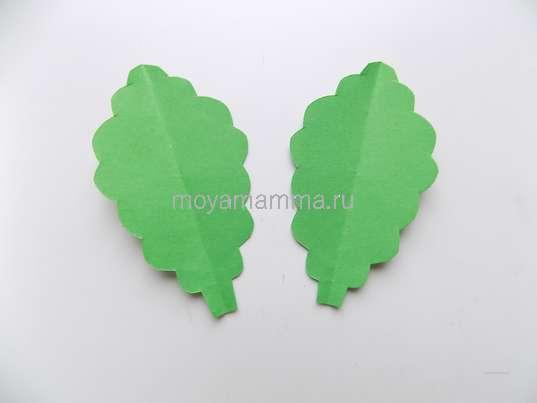 Зеленые листочки.