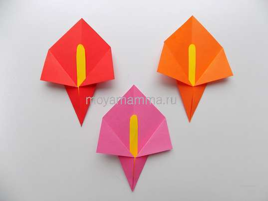 Аппликация с цветами оригами. Цветочки из бумаги красного, оранжевого и розового цвета