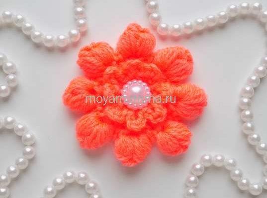 цветок с пышными столбиками