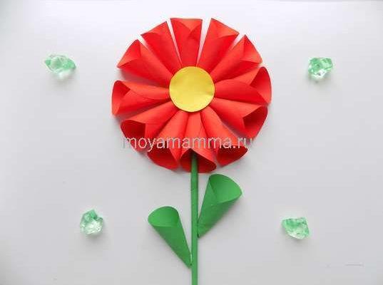 цветок из бумажных кругов
