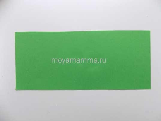 Прямоугольник зеленой бумаги.