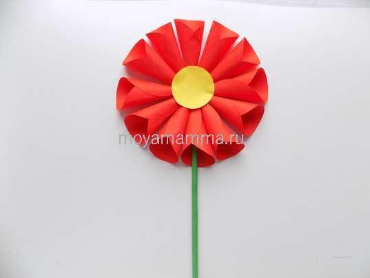 Цветок из бумажных кругов. Приклеивание скрученного из зеленого прямоугольника стебелька