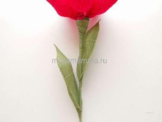 Как легко сделать цветок из гофрированной бумаги. Закрепление листочков