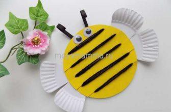 пчелка из тарелки