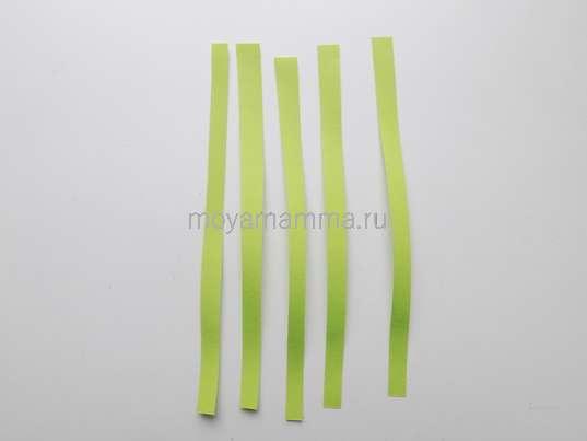 Узкие зеленые полоски